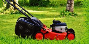 Best-self propelled mulching lawn mower