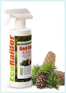 Best Natural Bed Bug Killer